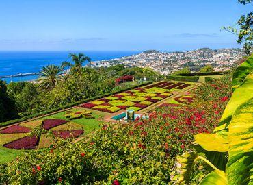 Canary Islands & Madeira Winter Warmth